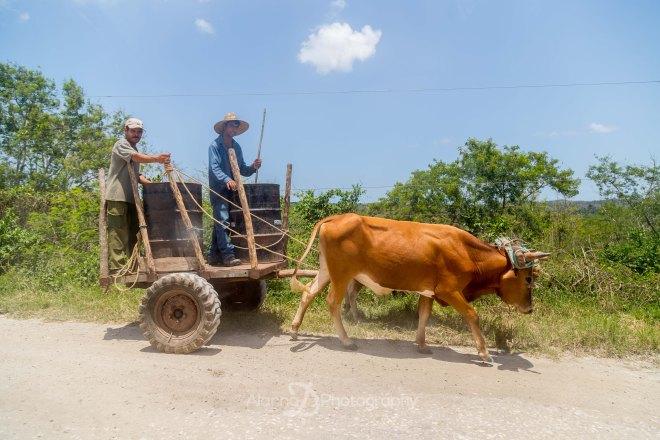 Cuba2-698