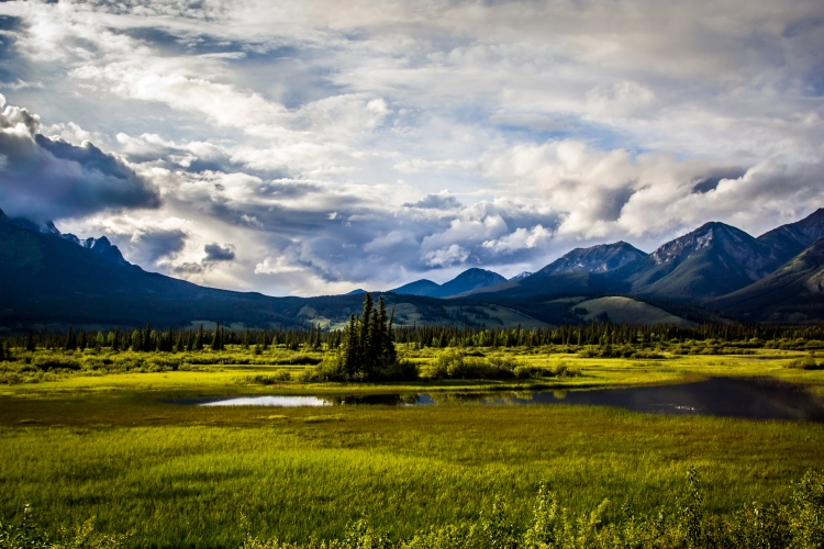 Jasper View-1