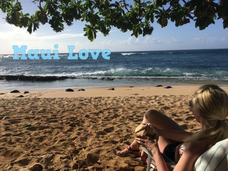 Ho'okipa Beach Park in Paia - Alanna D Photography