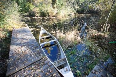 Our irrigation - photo inspiration pond