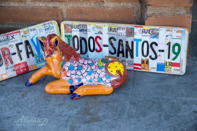 Todos Santos Souvenirs - Alanna D Photography
